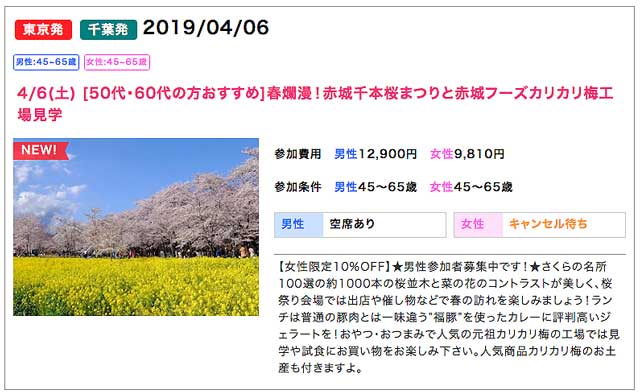 KTTおすすめツアー桜鑑賞